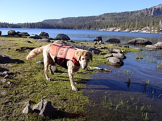Randee on the shore of Silver Lake with life preserver